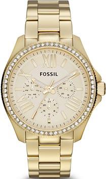 Наручные женские часы Fossil Am4482 (Коллекция Fossil Cecile)