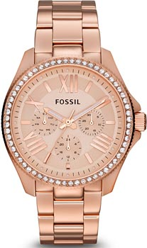 Наручные женские часы Fossil Am4483 (Коллекция Fossil Cecile)
